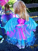 Fairy-wings-tutu