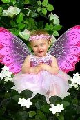 Baby-Toddler-Fairy-Princess