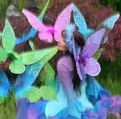 Fairy-Wings-Butterflies